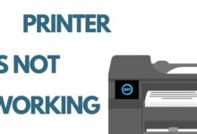 Photo of Top 10 Reasons Why Your Printer Is Not Working